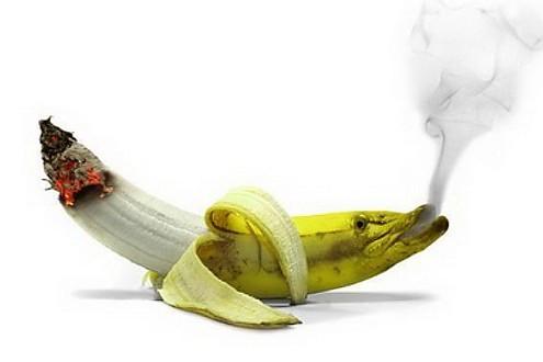 ОчУмелые про курение...