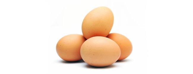 меню белковой диеты, отзывы